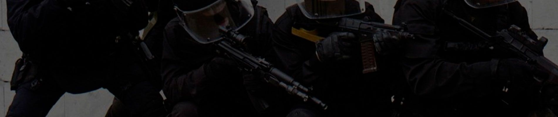 Физическая безопасность - Обеспечение всех видов физической безопасности в Киеве и Украине | Тор-Безопасность